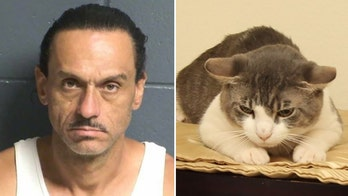 New Mexico man force-fed cat meth, battered girlfriend, police say