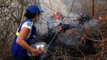 Focus on Brazil's Amazon fires, but a massive inferno rages next door in Bolivia