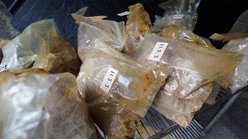 Australia, New Zealand seize enormous haul of MDMA, meth, worth $60M