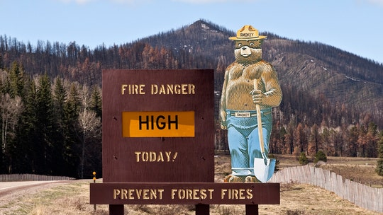 Smokey Bear, mascot of the US Forest Service, turns 75