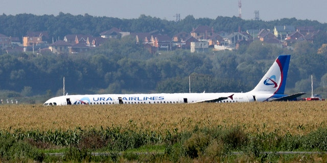 A Russian Ural Airlines' A321 plane is seen after an emergency landing in a cornfield near Ramenskoye, outside Moscow, Russia, Thursday, Aug. 15, 2019. (Associated Press)