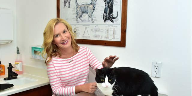 Westlake Legal Group AK-1 'Office' actress Angela Kinsey tells why her character loved cats Jessica Napoli fox-news/entertainment/tv fox-news/entertainment/genres/pets fox-news/entertainment/features/exclusive fox-news/entertainment fox news fnc/entertainment fnc article 1c8f058a-1692-5877-9cc2-7b3ced63ae61