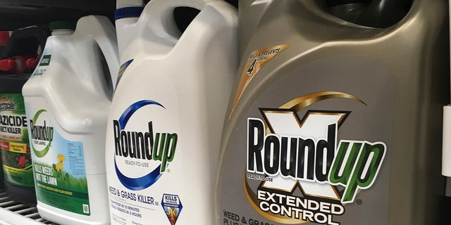 FILE - In this Feb. 24, 2019, file photo, containers of Roundup are displayed on a store shelf in San Francisco. (AP Photo/Haven Daley, File)