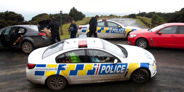 A manhunt was underway in New Zealand after an Australian tourist was killed following what police believe was a random attack on the van that he and his partner were sleeping inside.