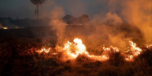 A fire burns a field on a farm in the Nova Santa Helena municipality, in the state of Mato Grosso, Brazil, on Friday. (AP Photo/Leo Correa)