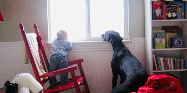 The author's son Riley and their dog Shadow