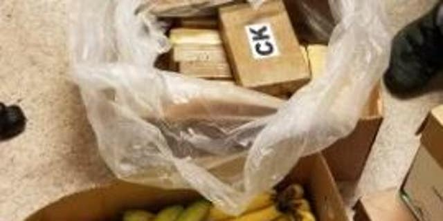 Employees at multiple Safeway stores in western Washington told authorities they found cocaine in banana box shipments.