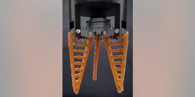 A 3-D printed self-healing gripper (Bram Vanderborght, Robotics)
