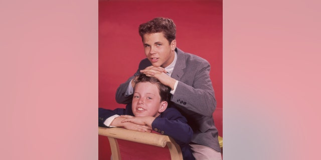 Tony Dow co-starred in 'Leave It To Beaver' for 234 episodes.