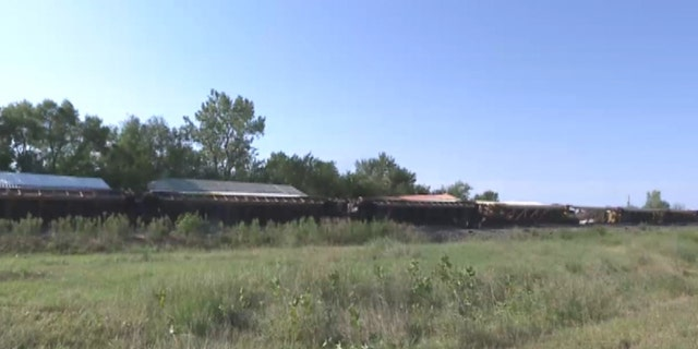 Dozens of train cars were blown off the tracks in Walton, Kansas, after strong gusts from passing thunderstorms just before midnight on Sunday.