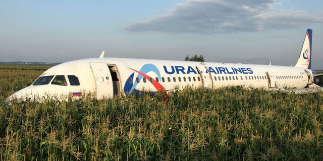 A view shows the Ural Airlines Airbus 321 passenger plane following an emergency landing in a field near Zhukovsky International Airport in Moscow Region, Russia August 15, 2019.