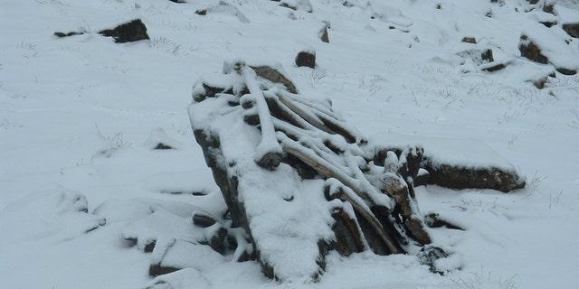 Snow-covered skeletal remains at the Roopkund Lake site. (Pramod Joglekar)