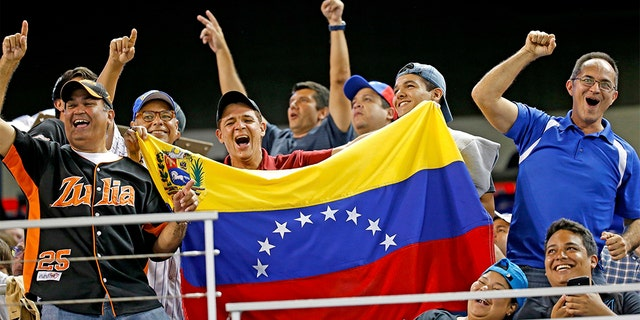 Baseball fans showing their support of Venezuelan players as the Miami Marlins hosted the Cleveland Indians at Marlins Park in Miami this past April. (Al Diaz/Miami Herald/TNS via Getty Images, File)