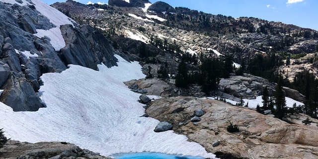 "A phenomenon known as ""watermelon snow"" was spotted last week at a high elevation near a lake at Yosemite National Park."