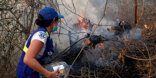 On Saturday, several helicopters along with police, military troops, firefighters and volunteers on the ground worked to extinguish fires in Bolivia's Chiquitania region, where the woods are dry at this time of year. Farmers commonly set fires in this season to clear land for crops or livestock, but sometimes the blazes get out of control.