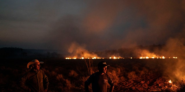 Leaders of the G7 have pledged to help Brazil fire the surge of wildfires sweeping across the Amazon. (AP Photo/Leo Correa)