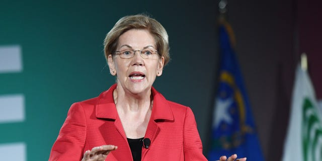 Democratic presidential candidate and U.S. Sen. Elizabeth Warren (D-MA) speaks during the 2020 Public Service Forum hosted by the American Federation of State, County and Municipal Employees (AFSCME) at UNLV on August 3, 2019 in Las Vegas, Nevada. (Photo by Ethan Miller/Getty Images)