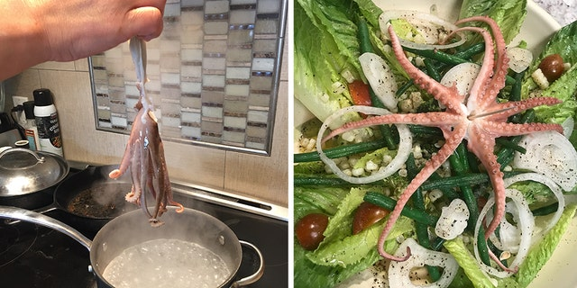 "Jamie Bisceglia said she cooked the octopus that bit her for dinner. ""I got a little revenge,"" she told Fox News."
