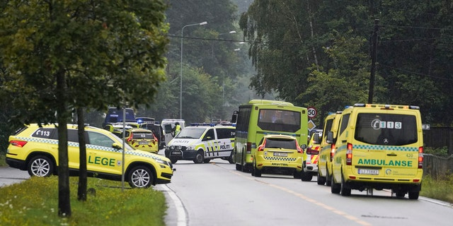 Westlake Legal Group norway4 Norway mosque shooting probed as 'act of terrorism,' woman found dead at home of suspect, police say Travis Fedschun fox-news/world/world-regions/europe fox-news/world/terrorism fox-news/world/religion fox news fnc/world fnc article 8e3d5f5a-194f-5191-9d44-6b6938e94cc2