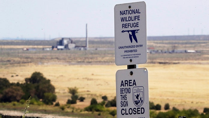 Sites of major US weapons tests now see wildlife flourishing