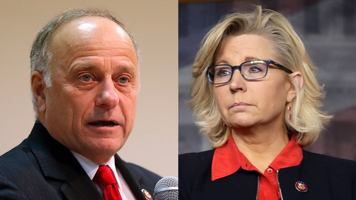 Rep. Liz Cheney blasts GOP colleague Steve King over 'appalling' rape and incest remarks: 'It's time for hi...