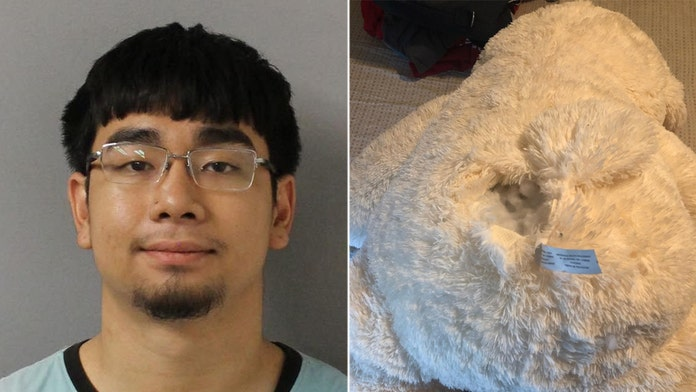 Tennessee teens arrested after police find stolen guns in teddy bear