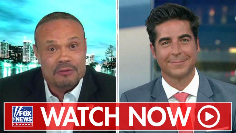 Dan Bongino on NBC analyst comparing Trump supporters to a 'terrorist organization'