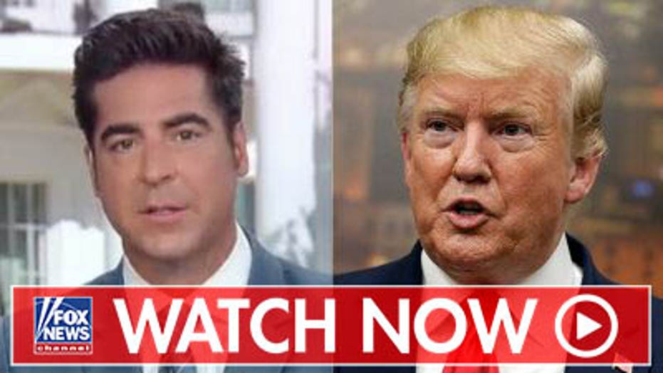 Jesse Watters on 2020 Dems criticizing Trump on immigration, birthright citizenship