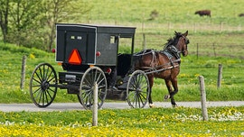 3 Michigan children killed, 1 hurt after vehicle crashes into Amish horse-drawn buggy