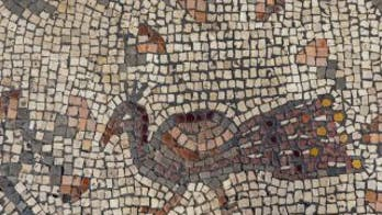 Mosaic discovered in Israeli 'Burnt Church' may depict Jesus鈥� miracle of the loaves and fishes