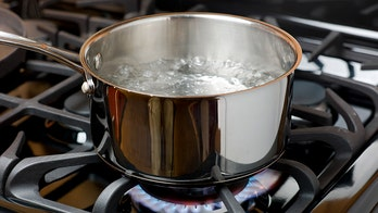 Georgia county issues boil water advisory after treatment plant loses power
