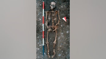 Medieval skeleton shows visible signs of 'decapitation' and execution 'by wheel of torture'