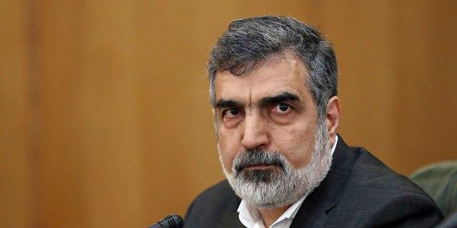 بهروز کمالوندی ، سخنگوی سازمان انرژی اتمی ایران ، در یک نشست خبری در تهران ، 7 ژوئیه 2019 ، در جمع خبرنگاران سخنرانی می کند. (آسوشیتدپرس)