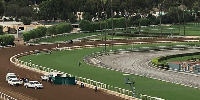 Westlake Legal Group 17cc64ee-AP19271847729768 32nd horse dies at Southern California racetrack in less than a year fox-news/us/us-regions/west/california fox-news/sports/horse-racing fox-news/sports fox news fnc/sports fnc Brie Stimson article 9dcc09a1-36f0-5821-bab0-1a063d0370eb