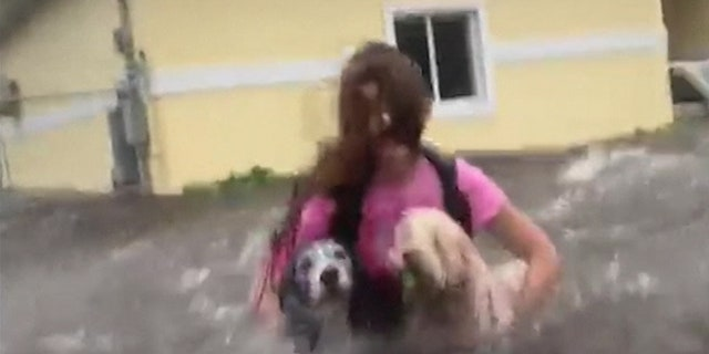 Dramatic video shows Priscilla Aylen's granddaughter, Julia, wading through intense floodwaters with the family's dogs trying to get to safety.