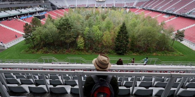 Visitors looks at the temporary art intervention by Swiss artist Klaus Littmann, FOR FOREST -The Unending Attraction of Nature, in the Woerthersee Stadium in Klagenfurt, Austria, Sunday, Sept. 8, 2019.
