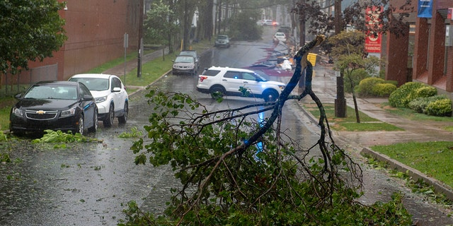 Tree branches block a street in Halifax, Nova Scotia as Hurricane Dorian approaches on Saturday, Sept. 7, 2019.