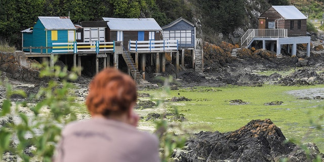 A woman looks at bungalows forbidden because of toxic seaweeds/green algae in the Vallais beach, near Saint-Brieuc, northwestern France, on July 10, 2019. - Fifty years after their appearance, green algae still arouse anger and associations call for more restrictive measures. (Photo by LOIC VENANCE / AFP) (Photo credit should read LOIC VENANCE/AFP/Getty Images)