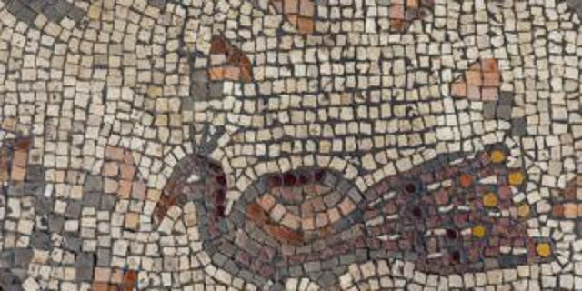 The mosaic discovered at the 'Burnt Church' in Hippos.