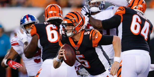 Westlake Legal Group NFL-Ryan-Finley Cincinnati Bengals 2019 NFL outlook: Schedule, players to watch & more Ryan Gaydos fox-news/sports/nfl/nfl-season-outlook fox-news/sports/nfl/cincinnati-bengals fox-news/sports/nfl fox-news/person/andy-dalton fox news fnc/sports fnc article 3af81054-b8d5-565b-ac65-16b1dd73e261