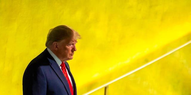 (AP Photo/Mary Altaffer)