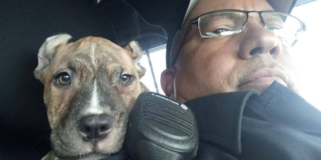 Westlake Legal Group dory Florida cop makes Hurricane Dorian rescue, adopts 6-week-old puppy named 'Dory' Paulina Dedaj fox-news/us/us-regions/southeast/florida fox-news/science/planet-earth/natural-disasters/hurricane-dorian fox-news/good-news fox news fnc/us fnc article 66c710cd-22b8-57b8-ab2b-f78757ba5bb6