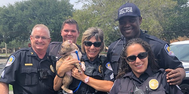 Westlake Legal Group dory2 Florida cop makes Hurricane Dorian rescue, adopts 6-week-old puppy named 'Dory' Paulina Dedaj fox-news/us/us-regions/southeast/florida fox-news/science/planet-earth/natural-disasters/hurricane-dorian fox-news/good-news fox news fnc/us fnc article 66c710cd-22b8-57b8-ab2b-f78757ba5bb6