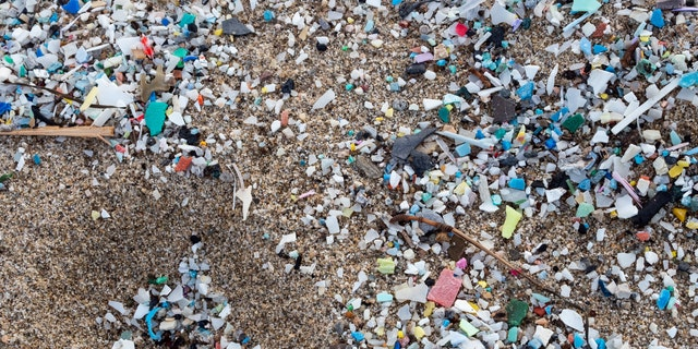 Researchers believe more than 4 billion bits of microplastic are in Tampa Bay, Florida. Above: A detail of microplastics along Italy's Schiavonea beach, transported by the Ionian sea during the last sea storm.