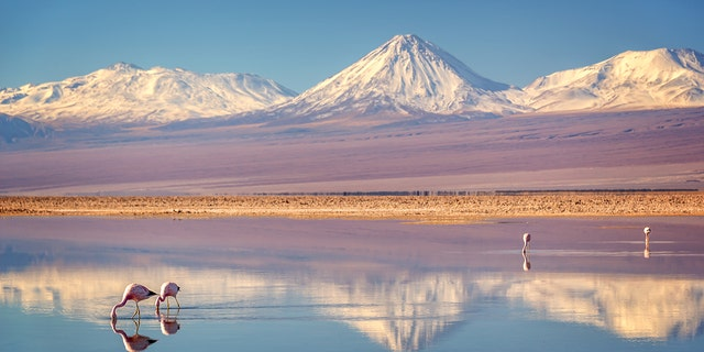 The arid nature of the Atacama Desert in Chile has made it a prime spot for UFO hunters.