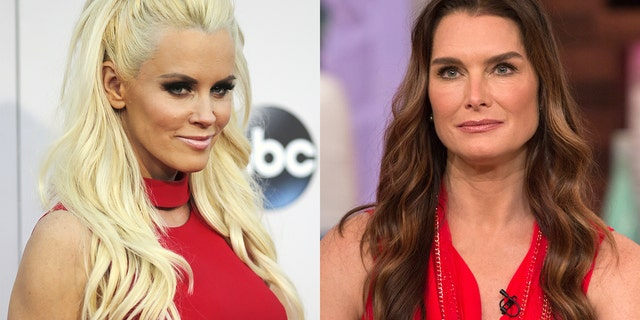 Westlake Legal Group jenny-mccarthy-brooke-shields Brooke Shields says she lost 'View' co-hosting gig to Jenny McCarthy Sasha Savitsky fox-news/person/jenny-mccarthy fox-news/entertainment/the-view fox-news/entertainment/celebrity-news fox news fnc/entertainment fnc d6794189-6f21-5bd4-8560-6ff1f48c0a67 article