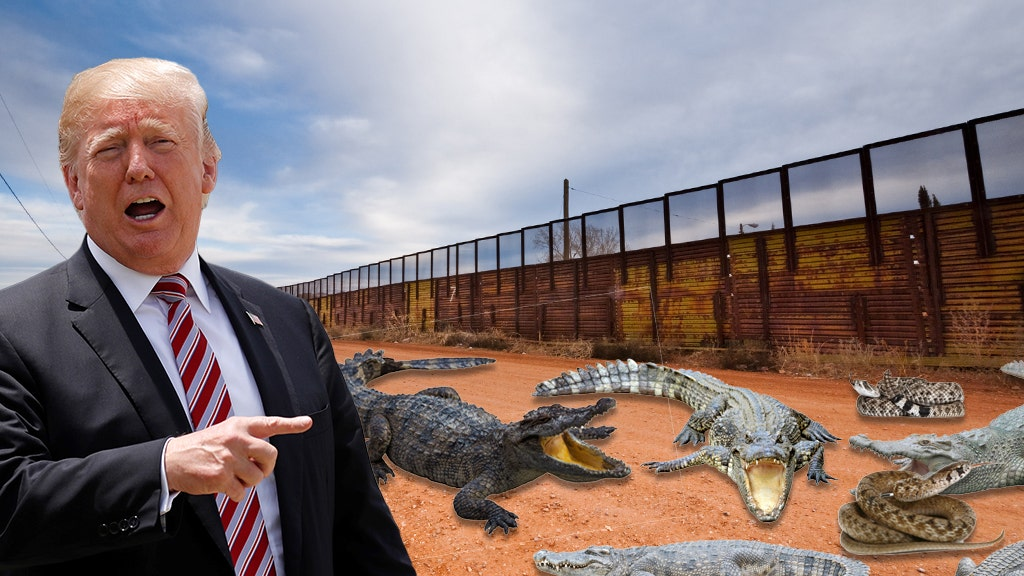 Trump asked about firing at migrants, wanted 'trench with deadly reptiles'