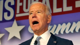 Donna Brazile: Biden campaign 'needs to be concerned' about cash woes