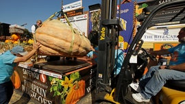 2,175-pound pumpkin sets California record
