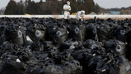 Typhoon Hagibis swept away Fukushima nuclear decontamination waste bags into river